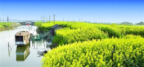 江南春天风景图片大全