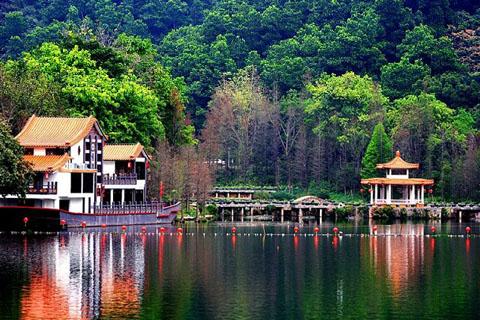 仙湖植物园风景图片