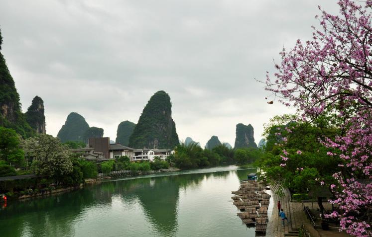 旅游资讯 桂林必游景点  中午在兴坪古镇逛了差不多1个小时,然后跟车