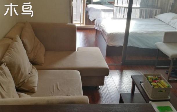 滇池路南亞風情園附近中央金座陽光一居室公寓