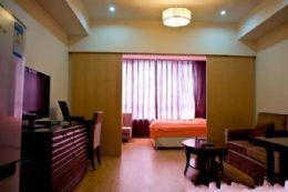 广安街上铂金公馆内精装公寓