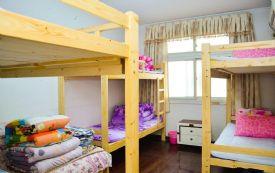 老城区政府附近女生六人房床位