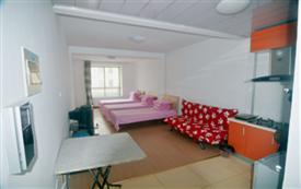 适合一家三口居住的一室一厅二层...
