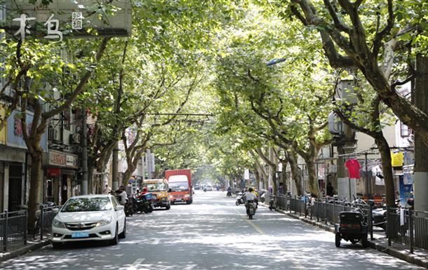 虹桥机场,上海动物园,交通大学,新天地,豫园,南京路步行街,同济大学