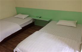 齐鲁银座附近 标准双床房