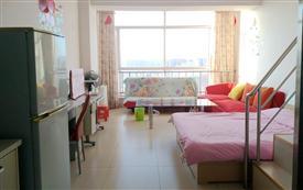 天和公寓 复式双床房 可做饭 ...