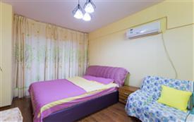 雅仕公寓_温馨大床房