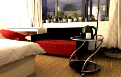 光谷 华科附近 可做饭一室一厅一卫文艺公寓