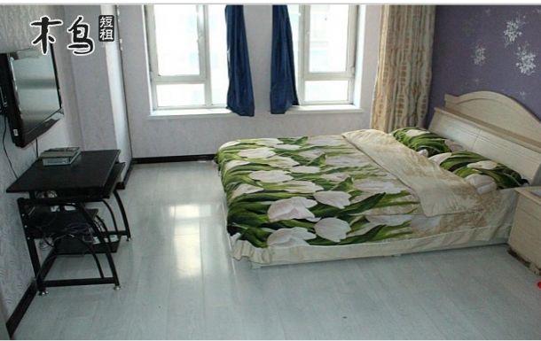 海丽德大厦 沈阳北站附近 清凉一夏大床房
