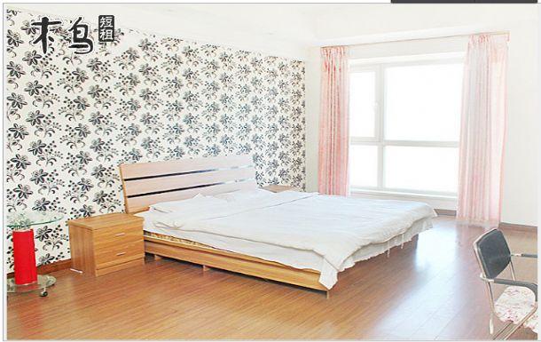 辽宁大学附近 温馨大床房