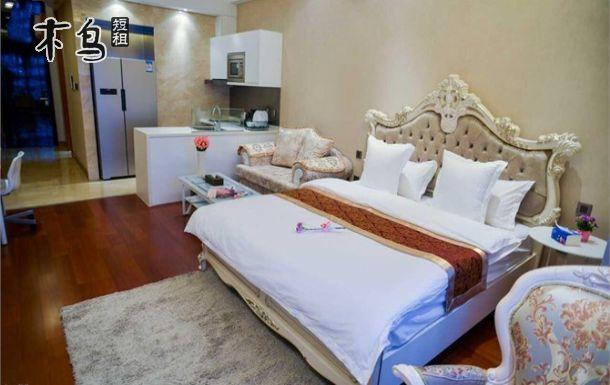 沈阳科学宫 南湖公园 西塔 欧式豪华大床房