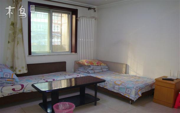 鸟巢 安贞医院 附近 一室一厅