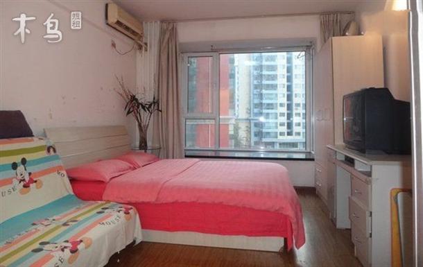 西单附近 豪华 温馨 舒适独立公寓短租