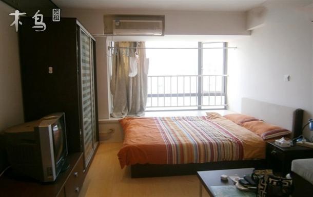 上海浦东新区世纪公园一室公寓日租短租