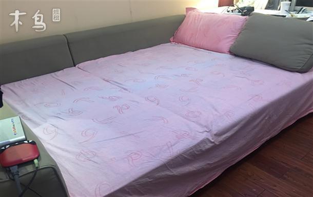 9号地铁泗泾站 金港花园二期 宜家舒适大床房