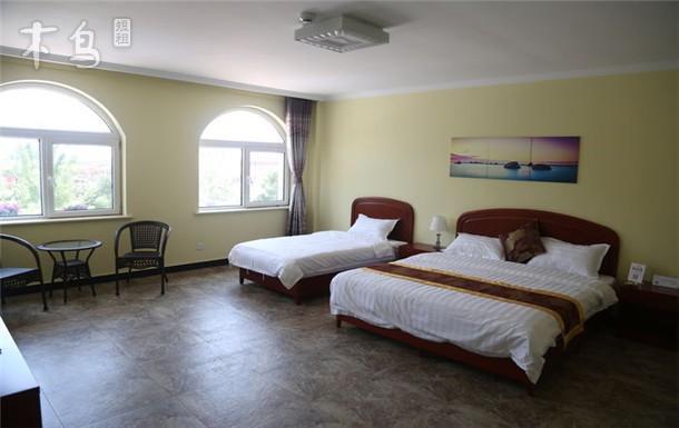 三室两厅大平米套房