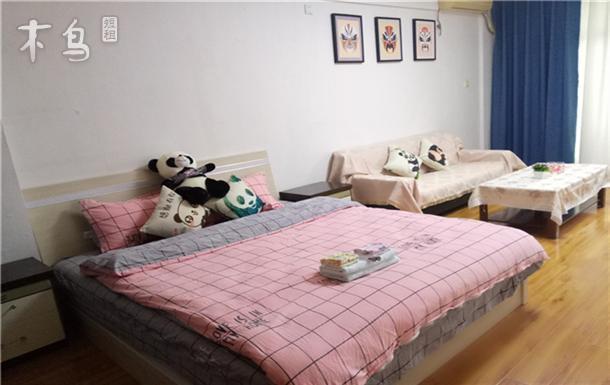 临西南财经大学 熊猫主题一居室