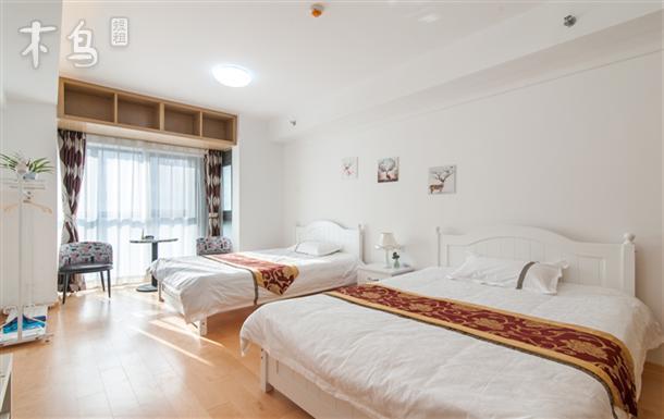南市大街一室一厅双床房