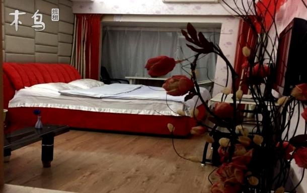 沈阳天润众家温馨经典一居室