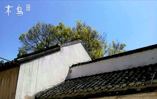 平江路主街【双溪】近观前街,拙政园,苏州博物馆