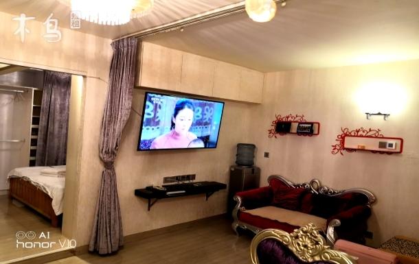 深圳馨雅阁公寓豪华复式一房一厅