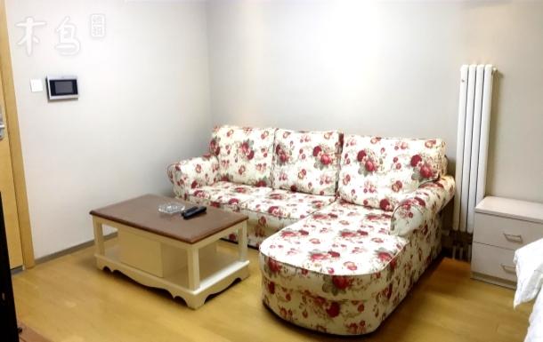 宜家清新品质双床房