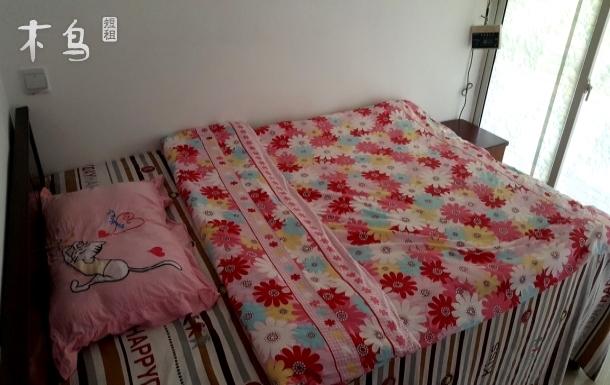 麦多广场附近 新式简装干净明亮宽敞清新3室1厅次卧阳光小屋
