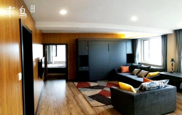 蒲昌路唐轩公馆五星级公寓一居室