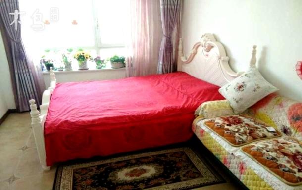 鲁美附中爱情公寓一居室