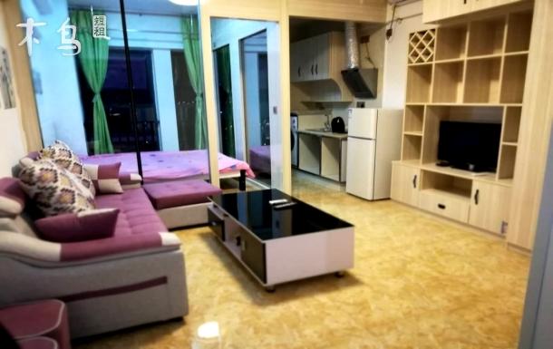 金科星耀天都现代中式能做饭一室一厅