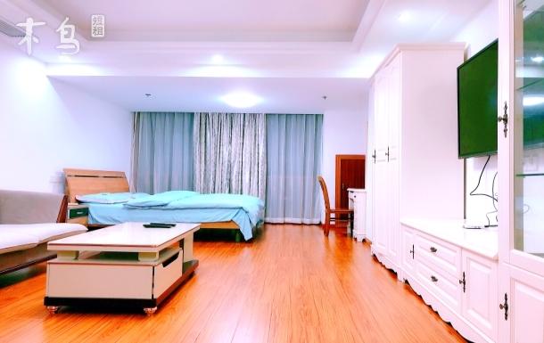 浦东机场D士尼野生动物园禹州商业一居公寓