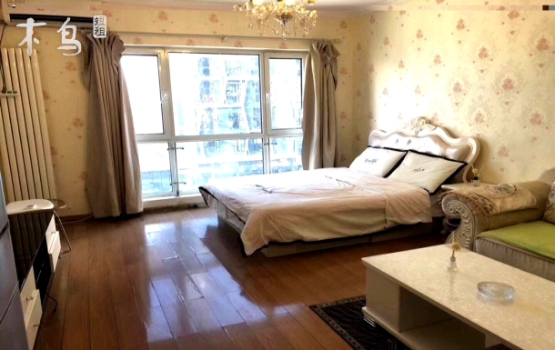 双井 首城国际 欧式分格 温馨整租公寓