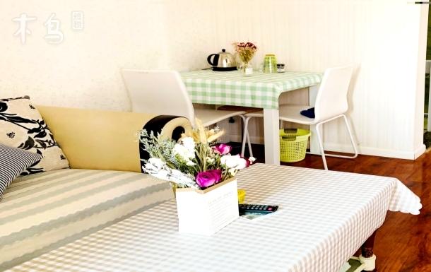 精装修小清新型温馨两居公寓