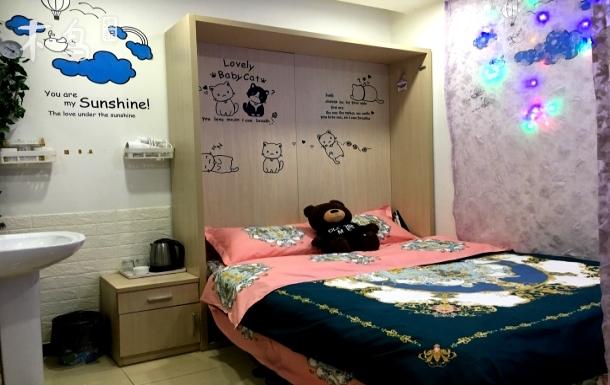 Y6网红一居一卫大床房 黄村火车站 北京南站 北京大学 协和医院 宣武门 动物园